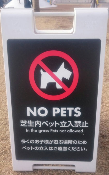 No Pets (photo by Jenny Young)